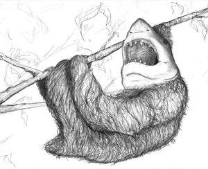 sloth-shark