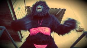 The Gorilla!