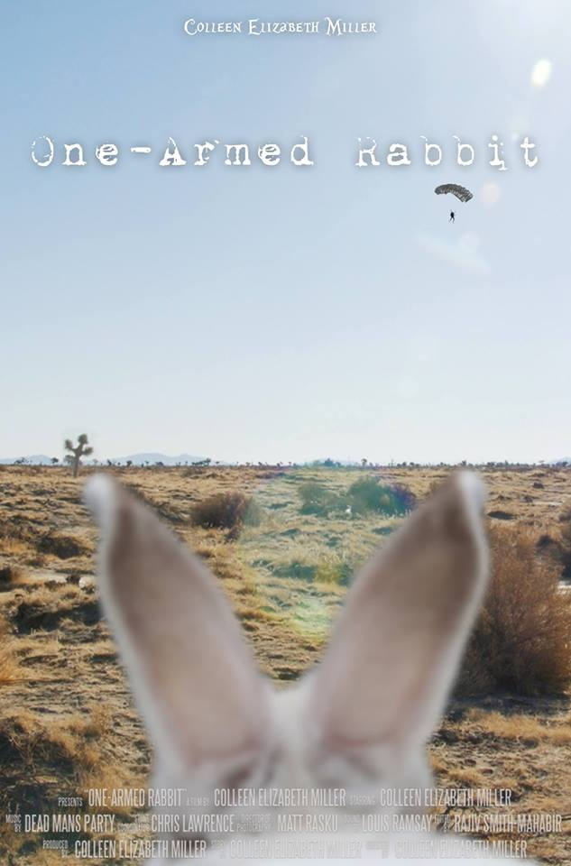 One-Armed Rabbit poster