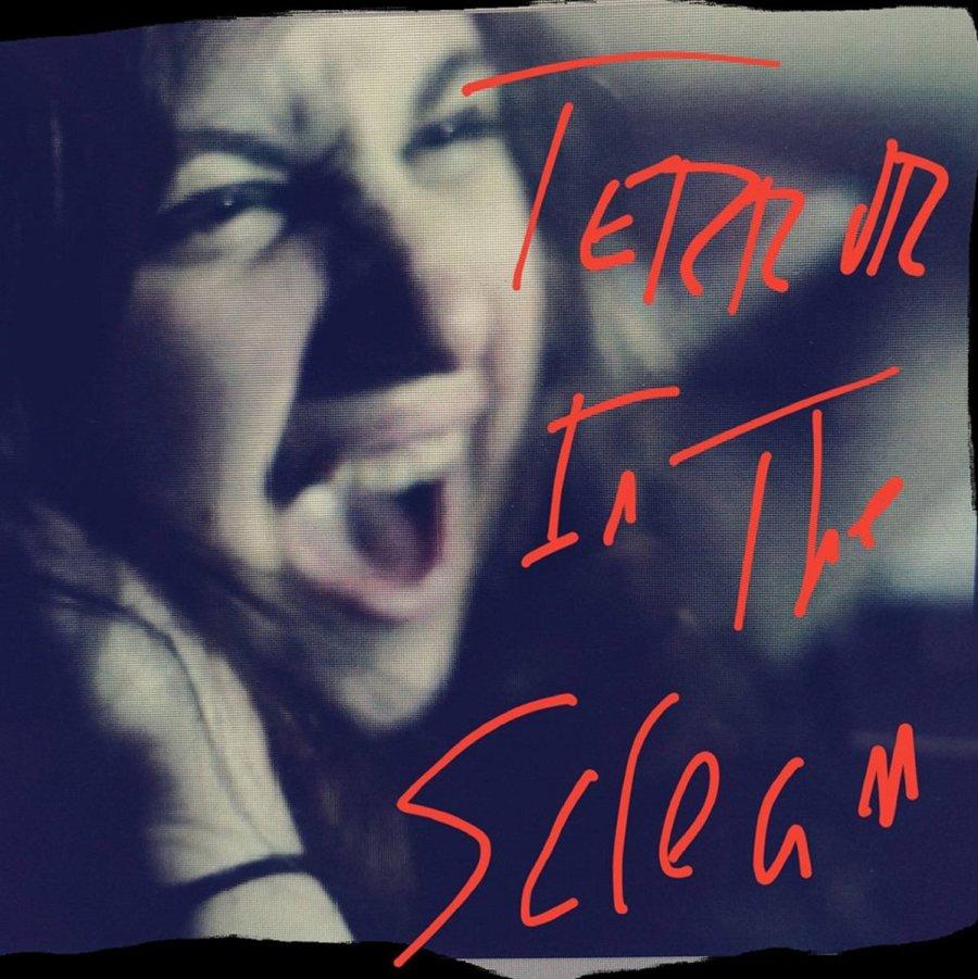 Terror in the Scream