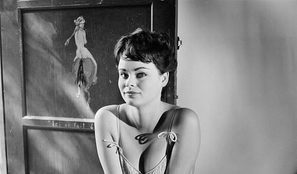 Pamela Searle Model