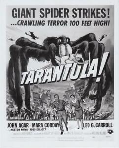 Mara Tarantula